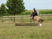 Generation-cheval_trec2.JPG