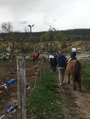 Generation-cheval_bapteme-poney.JPG