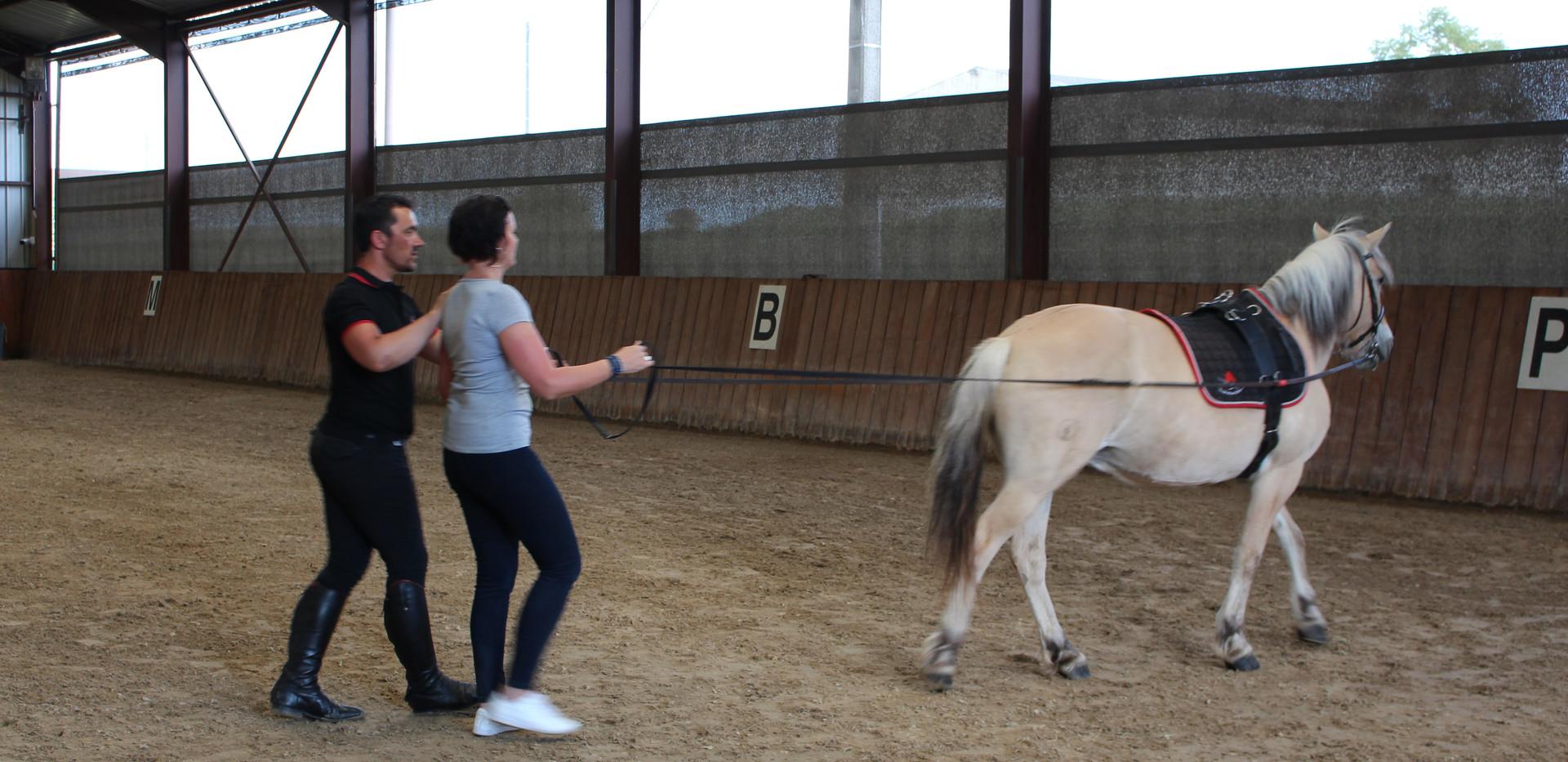 Generation-cheval_Ent10.JPG
