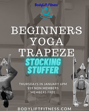 yoga trapeze beginner .PNG