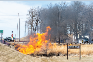 Controlled burn promotes healthy roadside vegetation