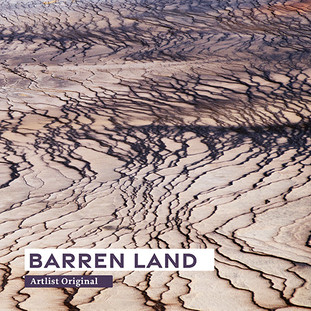 Artlist original - Barren Land - A.jpg