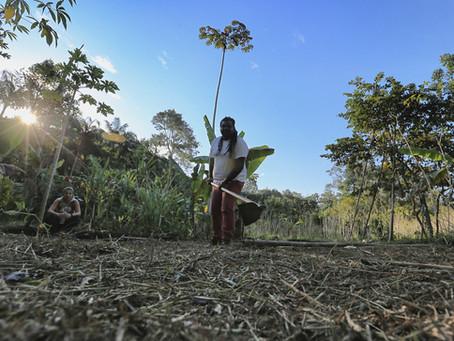 Disciplina de inverno: pés na terra e ecologia de saberes no território da Bocaina