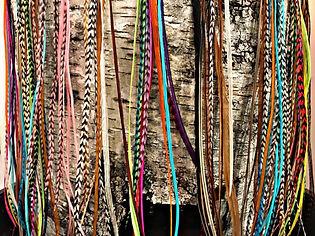Hair feathers display birch.jpg