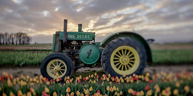 Tractor at Wooden Shoe Sunrise Tilted EB
