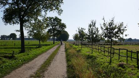 GR 5 route Brecht