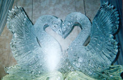 Double Swans
