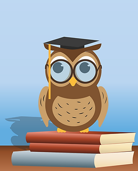 read-owl-1376297_1280.png