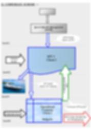 Kvevri flow charts corp-1.jpg