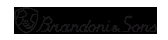 Brandoni-logo.png