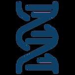 icons8-dna-helix-512_jq71ek.webp