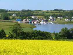 French River and Canola