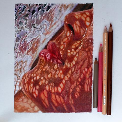 5x7 Lace Original Colored Pencil Drawing