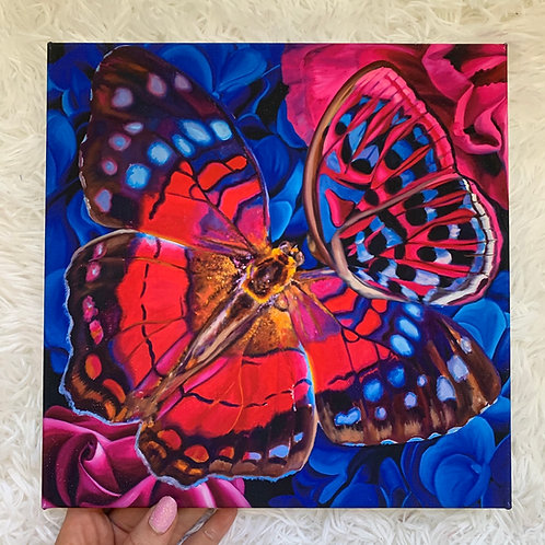 Butterfly Kiss 10x10 in. Canvas wrap print