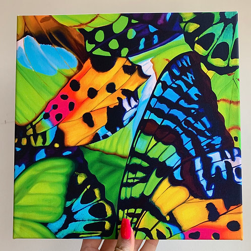 Party Tingles Butterflies 10x10 Canvas Wrap Print