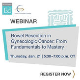 Bowel Resection in Gynecologic Cancer: From Fundamentals to Mastery