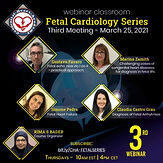 Fetal Cardiology Series - Third Meeting