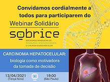 CARCINOMA HEPATOCELULAR - A BIOLOGIA COMO MOTIVADORA PARA A TOMADA DE DECISÃO