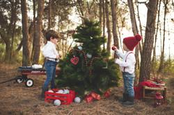 Promo Navidad 2017-46