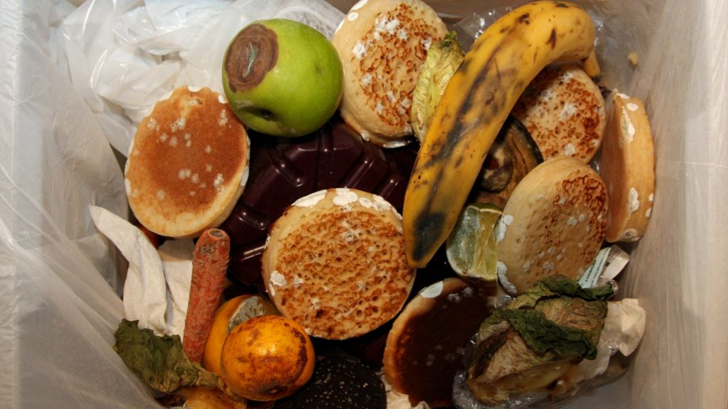 Food Waste Collection