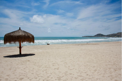 One of four beach palapas