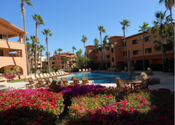 Large heated pool with bougainvillea