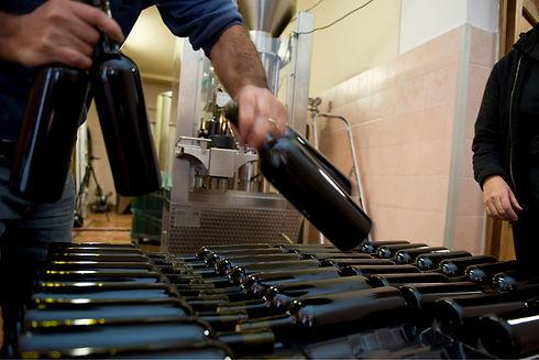 Homem organiza garrafas de vinho