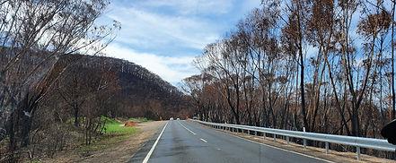 Bushfire2.jpg
