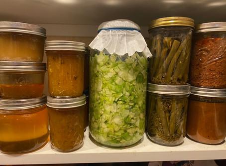 sauerkraut from our cabbage