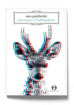 Maestoso è l'abbandono, il romanzo d'esordio di Sara Gamberini (Hacca)