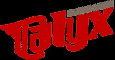 calyx-design-logo.11.18.png