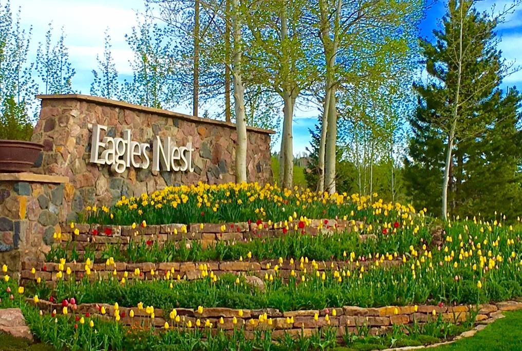 2016 Tulip Array at front enterance