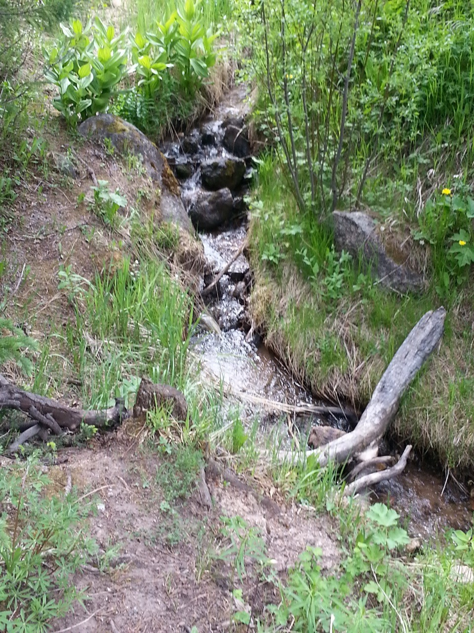 Water Fall off Eagles Nest Trail