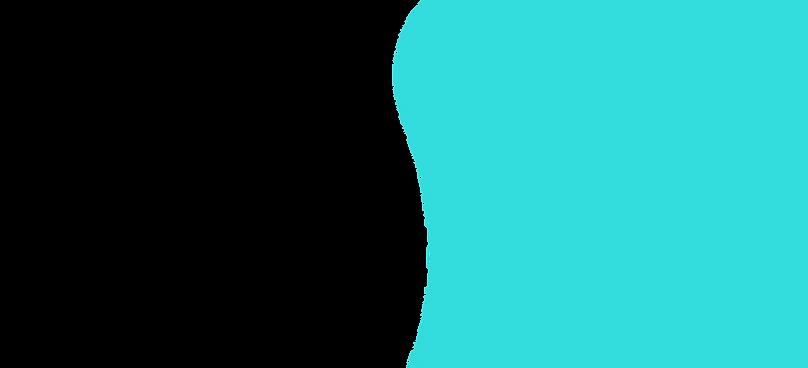 banner shape.png