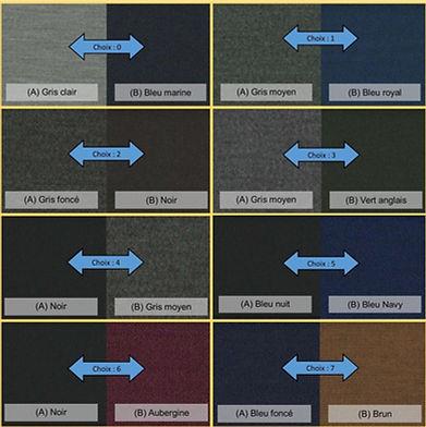 Choix tissus intérieur et extérieurs.jpg