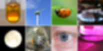 An image showing: a test-tube containing a brown solution; a wind turbine; a ladybird upside-down on a leaf; the flame on a gas cooker; the Moon; a monkey; a close-up of the human eye; and, a beaker containing a purple solution illuminated from behind.