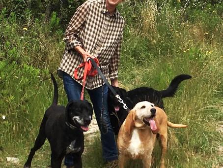 Besuch im Tierheim und mit Hunden spazieren gehen