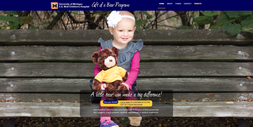 Graphic Design - C.S. Mott Teddy Bear Campaign Website Photo