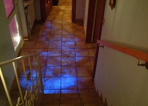 luminol piso.jpg