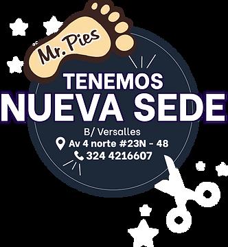 sedel_Recurso 1.png