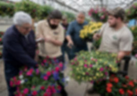 wholesale plants and annuals in rhode island