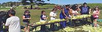 kids events in rhode island