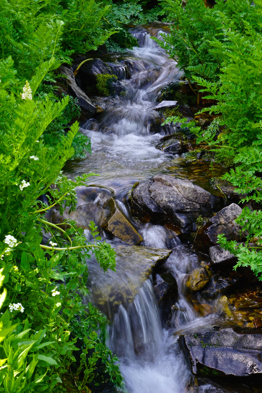 A Slight Little Creek