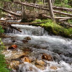 Banff NP Creek