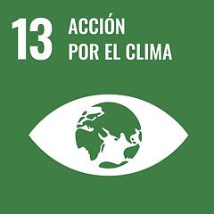 Logotipo Acción por el clima 13