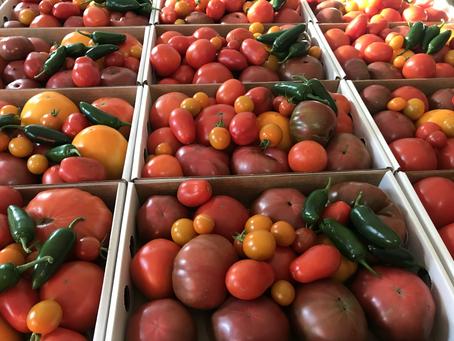Farm Share Wednesday August 25