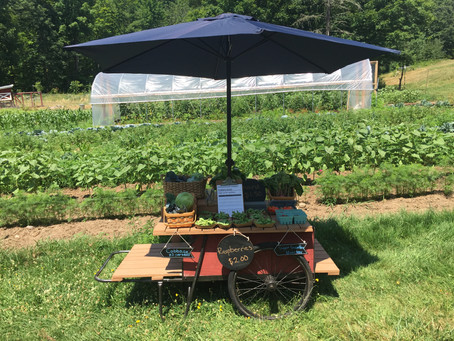 Farm Stand- Now Open!
