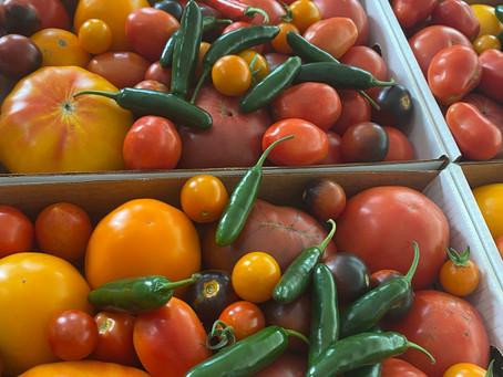 Farm Share Sunday Aug 22