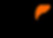 hk nikolaou logo