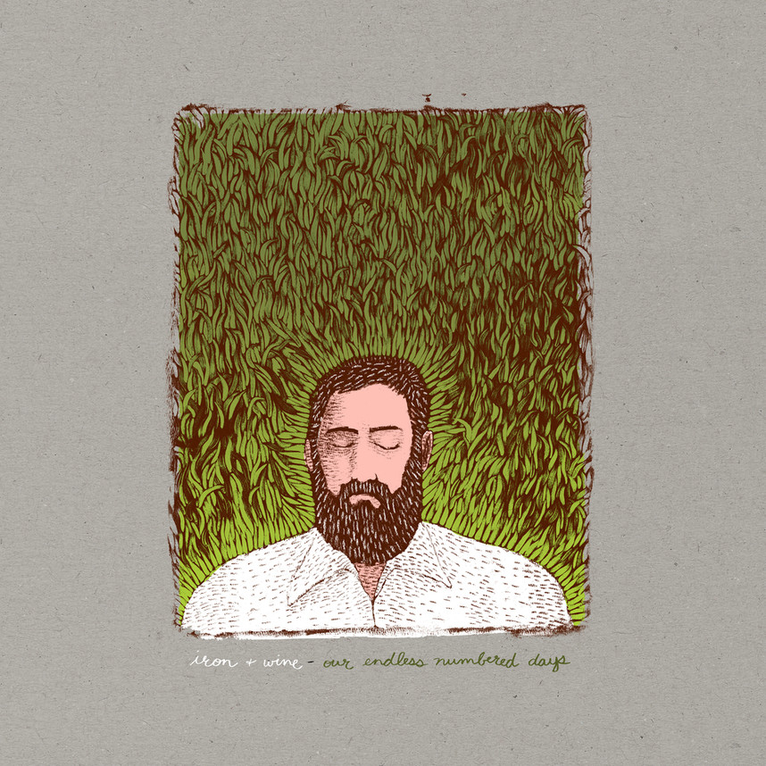 Iron & Wine Concert Review
